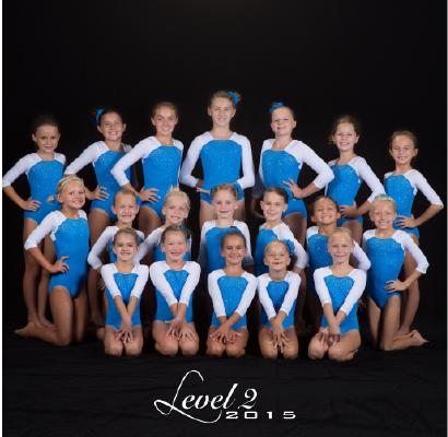 Level 2 2015
