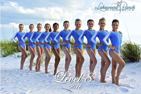 level8-2016